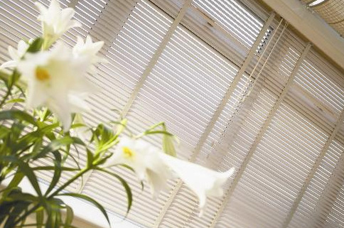 You are browsing images from the article: Conservatory Blinds